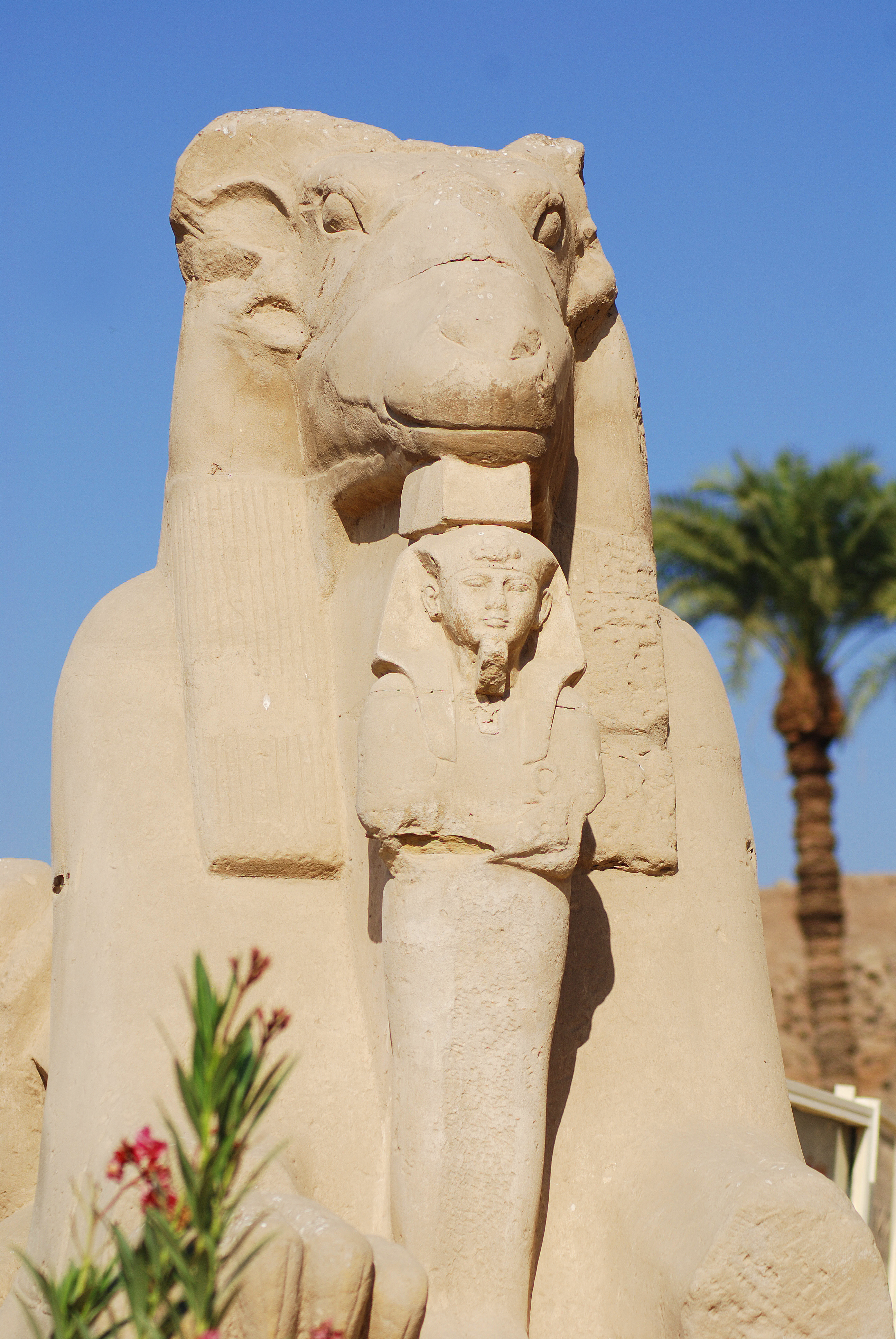 Avenue of ram-headed sphinxes, Temples of Karnak, Luxor, Egypt