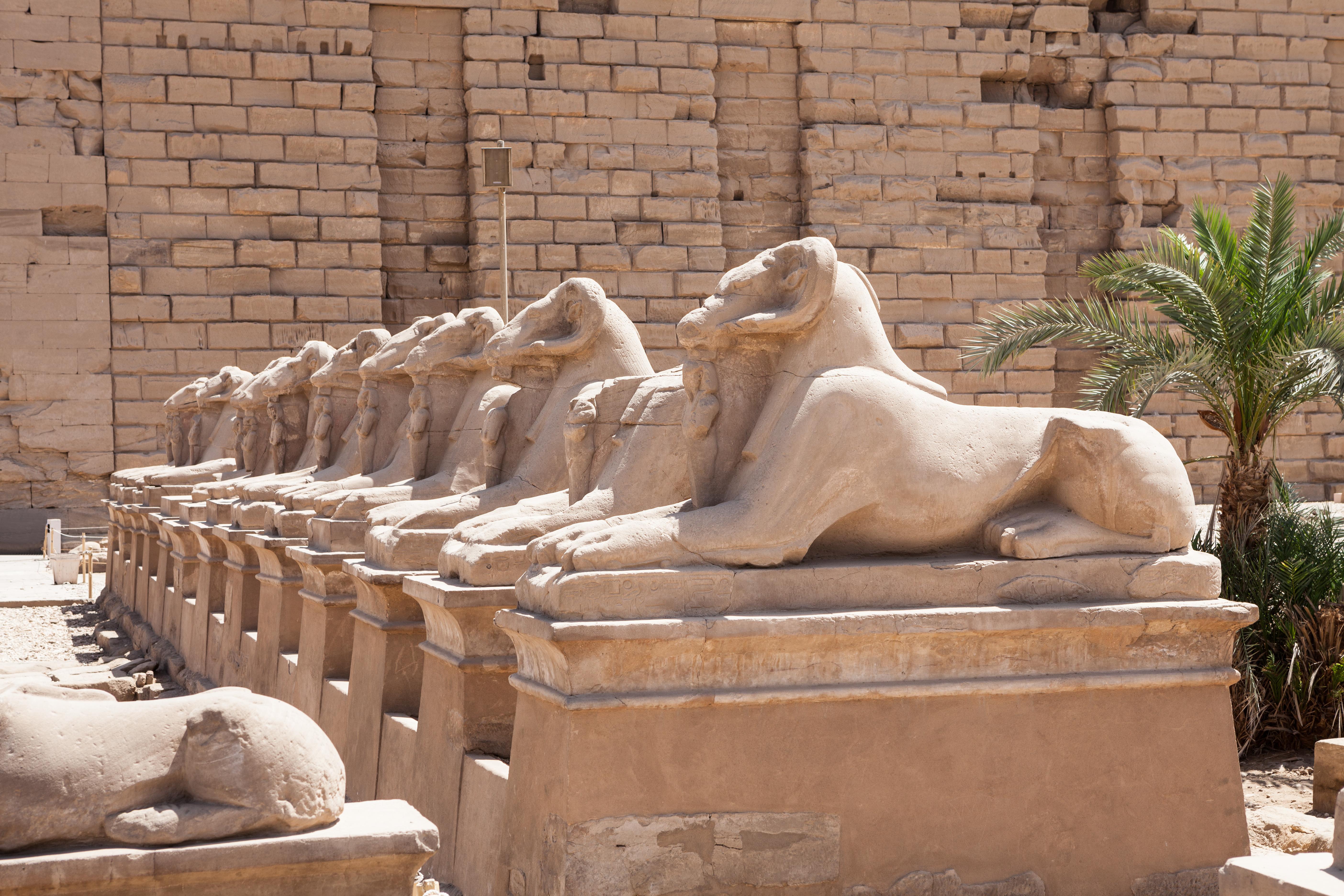 Sphinxes Statue In Karnak Temple